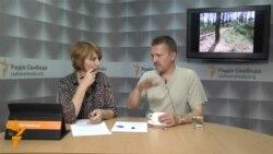 Ніхто в Україні не знає скільки незаконно вирубується лісу
