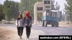 Туркменские фермеры, архивное фото.
