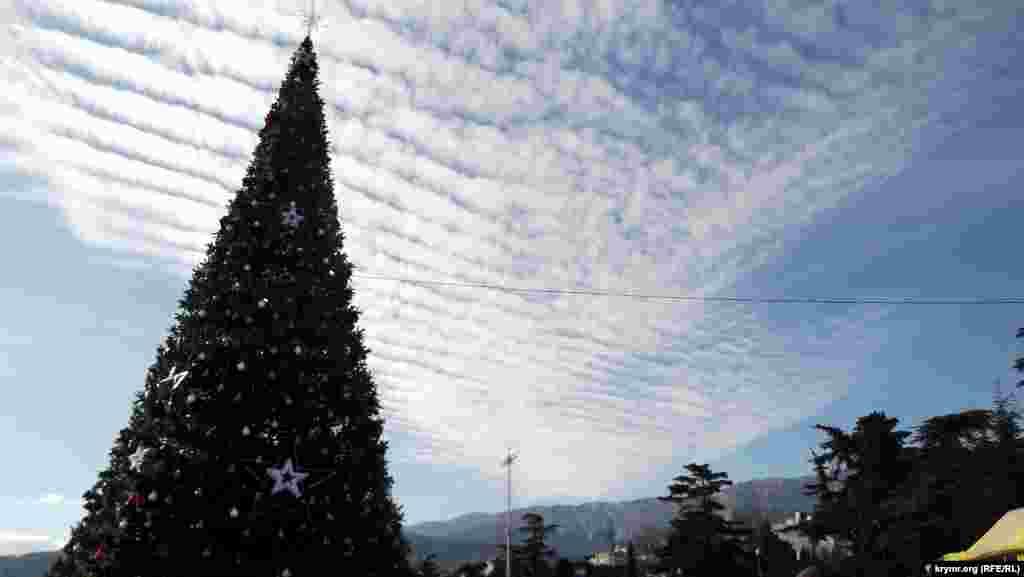 Новорічна ялинка в Ялті. Штучне дерево прикрасили 600 білими кулями, що світяться зірками й гірляндами. Висота ялинки з верхівкою – 19 метрів. Була куплена в Москві в грудні цього року на гроші ялтинських підприємців на наполегливу ініціативи ялтинських «єдиноросів».