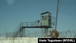 Тюремная сторожевая вышка и колючая проволока по периметру колонии. Алматинская область, 10 августа 2014 года.