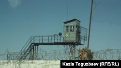 Тюремная сторожевая вышка и колючая проволока по периметру тюрьмы ЛА-155/8. Поселок Заречный Алматинской области, 10 августа 2014 года.