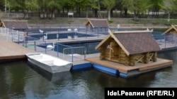 Лебеди и домик лебедей в парке Металлургов летом