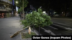 Furtuna din București a dărâmat mai mulți copaci și a lăsat în urmă avarii. Mai mulți oameni au sesizat că nu au primit semnalul de alertă decât după ce furtuna începuse deja.