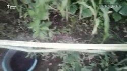 Лӯбиёи бештар аз 1 метрӣ дар Файзобод