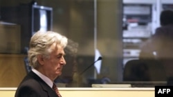 Radovan Karadžić u sudnici Haškog tribunala, 29. avgust 2009