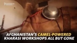 Afghanistan's Camel-Powered Kharasi Workshops All But Gone