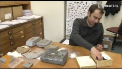 Тираннозаврларнинг ватани Осиё бўлгани аниқланди