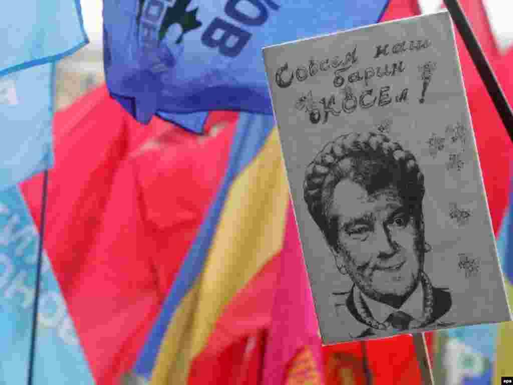 کاريکاتوری از ويکتور يوشچنکو، رييس جمهوری اوکراين با مدل مويی وام گرفته از يوليا تيموشنکو، نخست وزير پيشين اين کشور. خانم تيموشنکو، پس از انقلاب نارنجی نخست وزير اوکراين شد، اما پس از مدتی به صف مخالفان يوشچنکو پيوست. وی در ائتلاف آبی ها شرکت نکرده است
