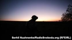 Украинский солдат вблизи села Крымское, Жолобок, Луганская область (архивное фото)