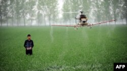UN navodi kako pesticidi nisu potrebni za osiguranje rasta poljoprivredne proizvodnje