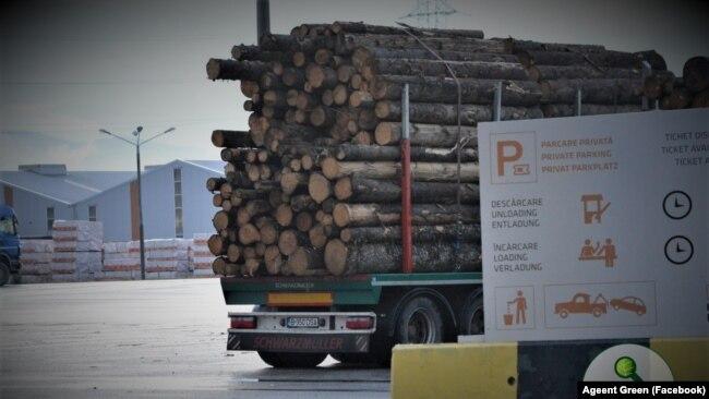 Traficul de lemn exploatat ilegal pare să fi scăpat de sub control în mai multe județe din țară