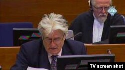 Ratni lider bosanskih Srba Radovan Karadžić na suđenju u Hagu, 1. novembar 2010.