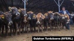Скотный рынок в Кыргызстане. Архивное фото.