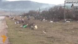 Влада Криму не вирішує проблему зі сміттям на півострові