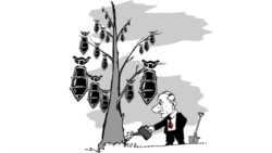 Сегодня в Америке: противоракетная фобия Москвы