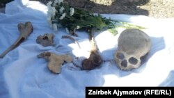 A recent find of skeletal remains found along the path taken by Kyrgyz trying to escape Russian forces on the way to China.