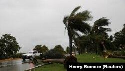 Uragan je srušio oko 95 stabala u Kankunu, Meksiko, 7. oktobar