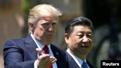 Президент США Дональд Трамп и лидер Китая Си Цзиньпин (справа) во Флориде. 7 апреля 2017 года