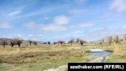 Tuhbatullin: Türkmenistanda tebigaty goramak meselesi iň soňky orunlarda durýar