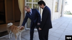 Russian President Vladimir Putin (left) and Japanese Prime Minister Shinzo Abe are seen at their last meeting in Sochi, Russia, in February 2014.