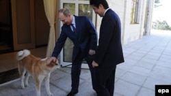 Одна з попередніх зустрічей російського президента Путіна (в центрі) та японського прем'єра Абе (праворуч) у Сочі, лютий 2014 року