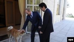 Vladimir Putin (solda) və Shinzo Abe Soçidə, 2014-cü il