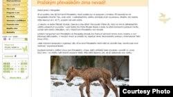 """Зоопарктын сайтындагы жаңылыкта """"Прагалык кулун сууктан коркпойт!"""" деп айтылды"""