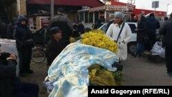 По данным на 7 марта нынче в Россию из Абхазии было ввезено уже более 155 тонн мимозы