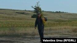 Кыргызстанда учурда жумушсуздуктун деңгээли 8,3% түзөт.