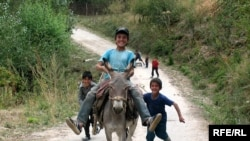 Tajik children play with a donkey -- whose value has since tripled.