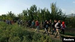 Një grup i migrantëve duke ecur në anën e Serbisë afër kufirit të Kroacisë