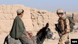 Принц (справа) и ишак. Где-то в Афганистане в начале XXI века