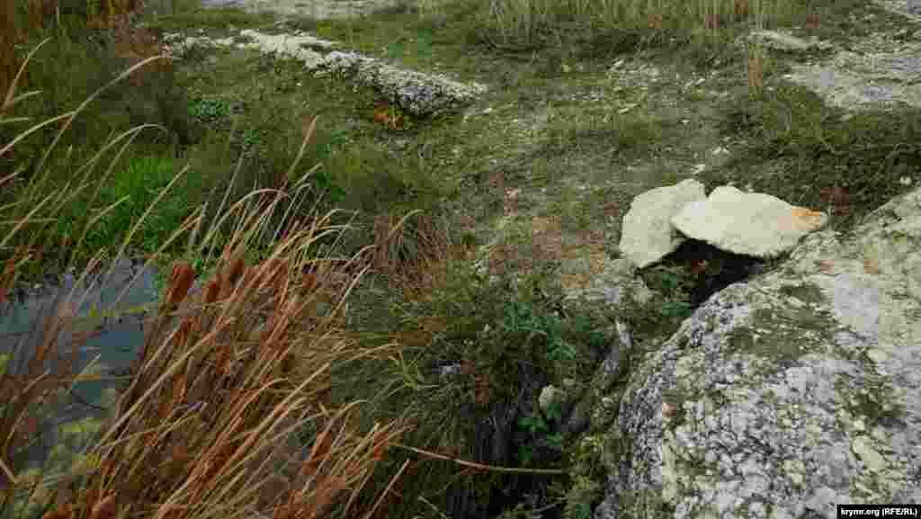 Це джерело на Ак-Кая знайшли і окультурили місцеві пастухи