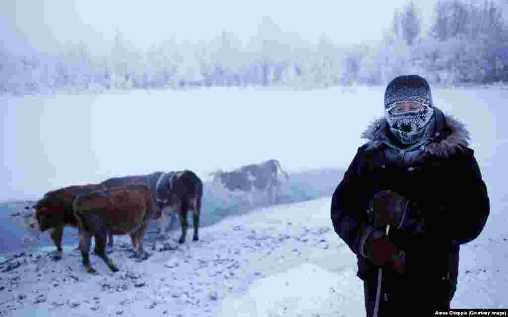 "Oymyakon means ""nonfrozen water"" in the local language. Thanks to this spring, which remains unfrozen throughout the winter, it is a welcome stop for herders of reindeer and cattle."