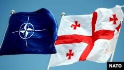 ნატოს და საქართველოს დროშა
