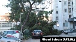 Vjetar je čupao stabla iz korijena, obarao fasade stambenih zgrada, prevrtao kamione, te nanio druge štete na javnim i privatnim objektima