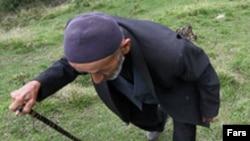 Azərbaycanda şəcərəni tanımaq ənənəsi niyə zəifdir?
