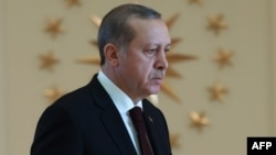 Austria has demanded the freezing of EU talks with Turkey because of Ankara's crackdown on civil society since July's failed coup against President Recep Tayyip Erdogan (pictured, file photo).