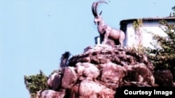 Locals felt outsiders were mocking their ibex statue.