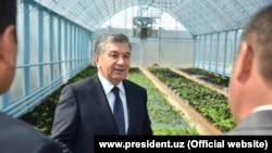 Президент Узбекистана Шавкат Мирзияев в Наманганской области, 2 мая 2018 года.