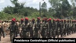 Батальон правительственной армии ЦАР, подготовленный российскими инструкторами
