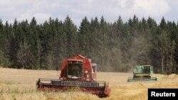 Руралните и аграрните бизниси недоволно ги користат ИПАРД средствата