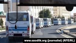 Колонна-автобусов, увозящие узбекских сборщиков хлопка на поля.