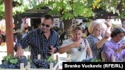 Srbija: Oplenačka berba 2011.