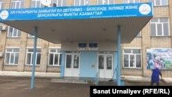 Чапаев ауылындағы № 1 орта мектеп. Батыс Қазақстан облысы, 13 қараша 2017 жыл.