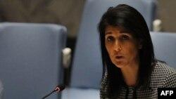 نیکی هیلی، سفیر آمریکا در سازمان ملل متحد، میگوید که کشورش آماده همکاری با روسیه برای فرونشاندن آتش جنگ در سوریه است.