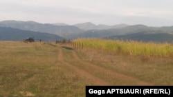 სოფელი დიცი