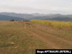 Дитси ауылының маңындағы қадалар. 17 қыркүйек 2013 жыл.