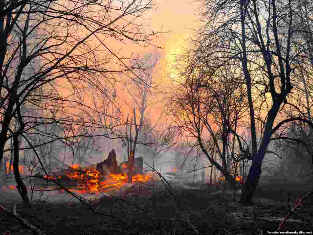A fire burns in the exclusion zone around the Chernobyl nuclear power plant outside the village of Rahivka on April 5.