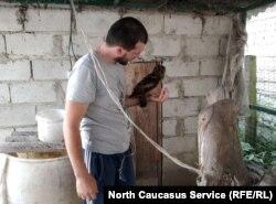 Проблема содержания ушастых сов дома – это рацион